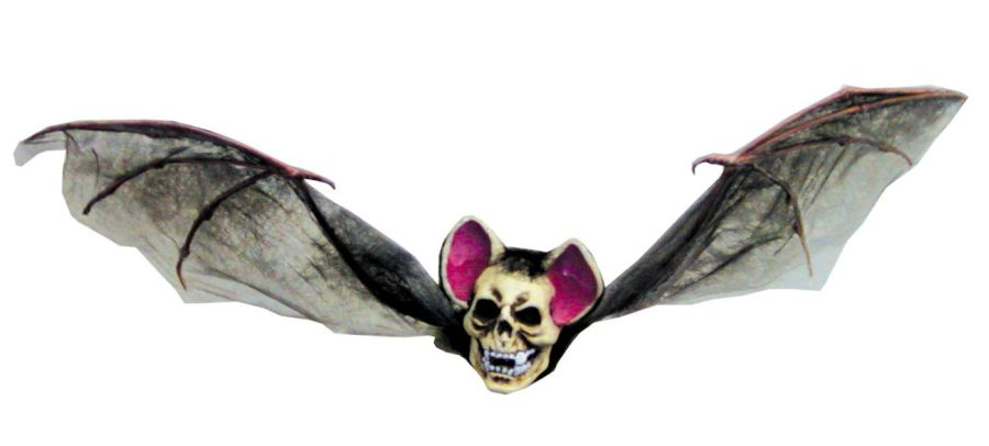 creepybat.jpeg