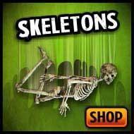 Skeletons, skulls, bones & poseable skeletons